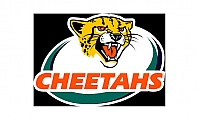 Falcons Swoop for Cheetah Uys