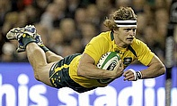 Nick Cummins will leave Australia and the Western Force for Japan