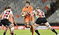 Cheetahs and Southern Kings in action
