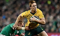 Australia winger Dane Haylett-Petty could be out for season after bicep surgery