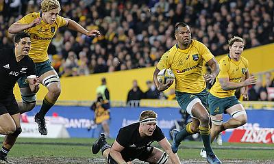 The Wallabies in the Rugby Championship
