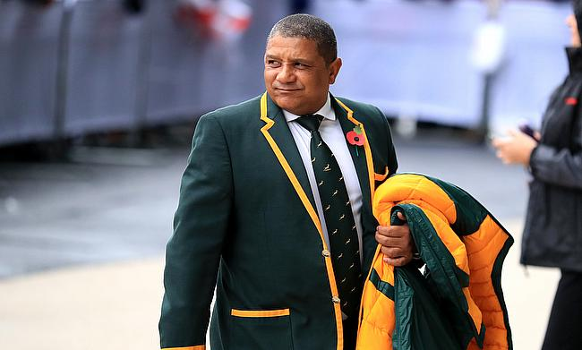 Allister Coetzee had a disappointing outing with the Springboks